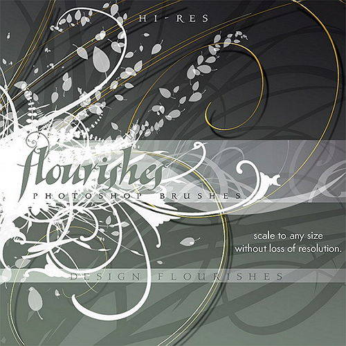 Rons Daviney - Flourishes photoshop brushes design